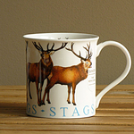 Dunoon Becher - STAGS - Bute