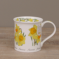 Dunoon Becher - SPRING FLOWERS Daffodil - Bute