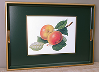 Tablett Lady Clare - HOOKER FRUITS - Large Tray